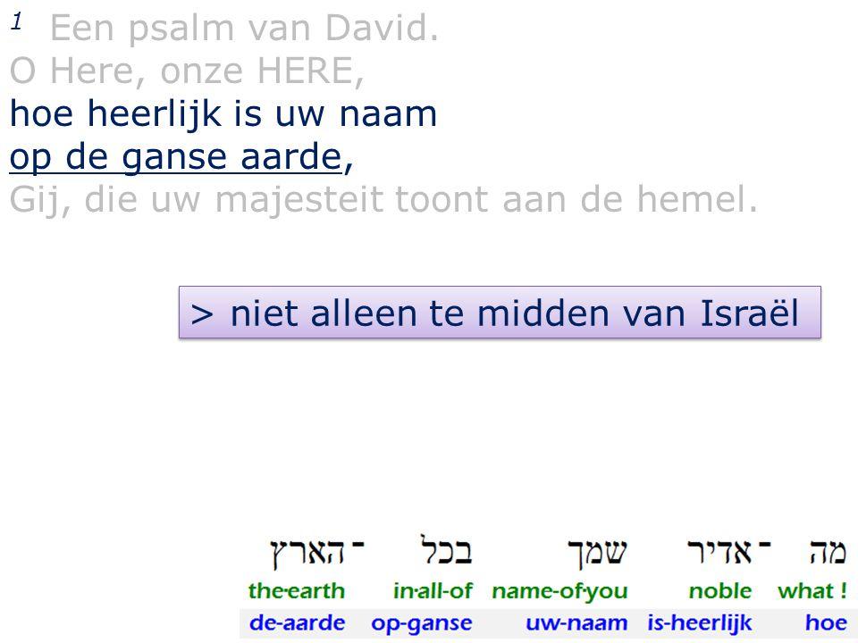 1 Een psalm van David. O Here, onze HERE, hoe heerlijk is uw naam op de ganse aarde, Gij, die uw majesteit toont aan de hemel. > niet alleen te midden