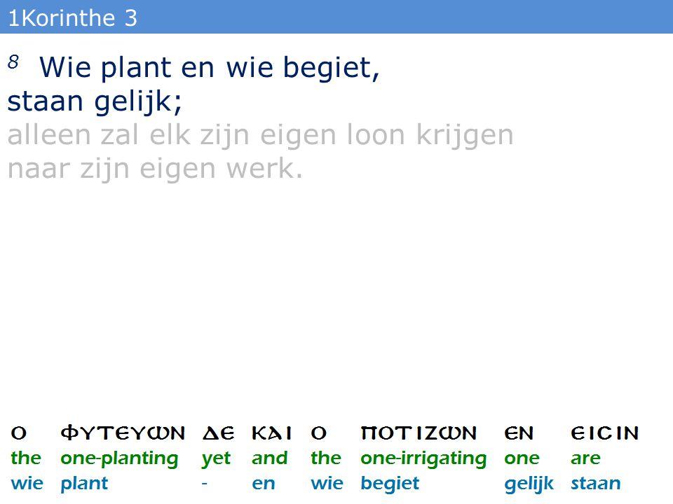 1Korinthe 3 8 Wie plant en wie begiet, staan gelijk; alleen zal elk zijn eigen loon krijgen naar zijn eigen werk.
