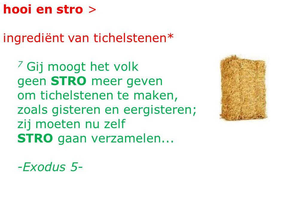 hooi en stro > ingrediënt van tichelstenen* 7 Gij moogt het volk geen STRO meer geven om tichelstenen te maken, zoals gisteren en eergisteren; zij moeten nu zelf STRO gaan verzamelen...