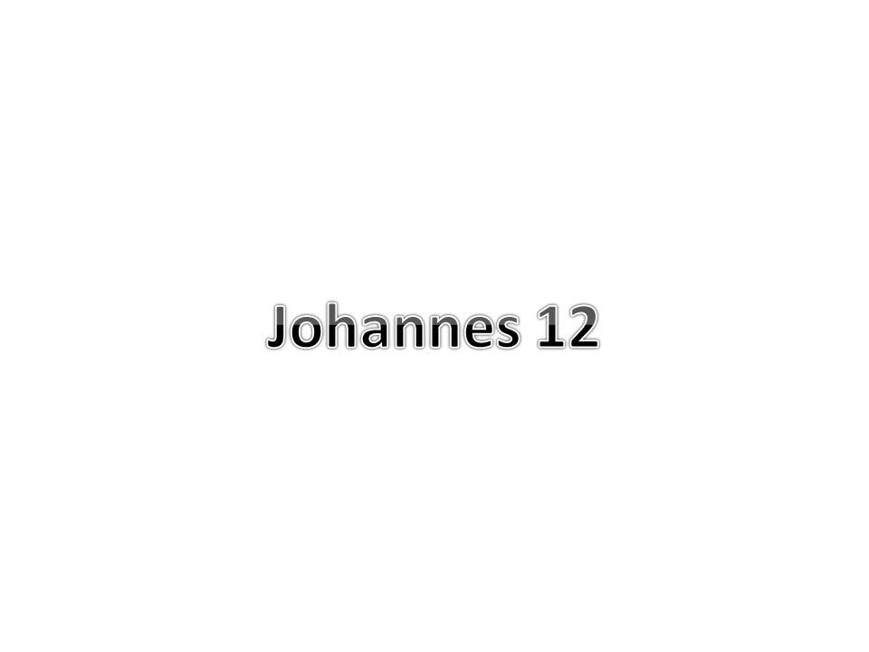 Johannes 12 42 En toch geloofden zelfs uit de oversten velen in Hem, maar ter wille van de Farizeeen kwamen zij er niet voor uit, om niet uit de synagoge te worden gebannen; = wisten dat het waar was