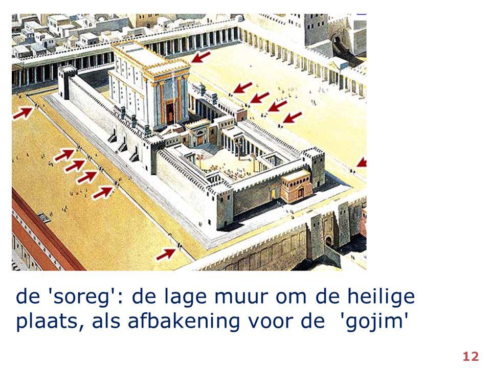 de soreg : de lage muur om de heilige plaats, als afbakening voor de gojim 12