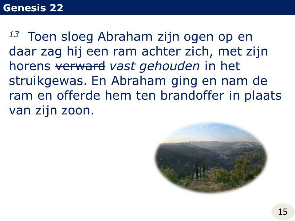 Genesis 22 15 13 Toen sloeg Abraham zijn ogen op en daar zag hij een ram achter zich, met zijn horens verward vast gehouden in het struikgewas. En Abr