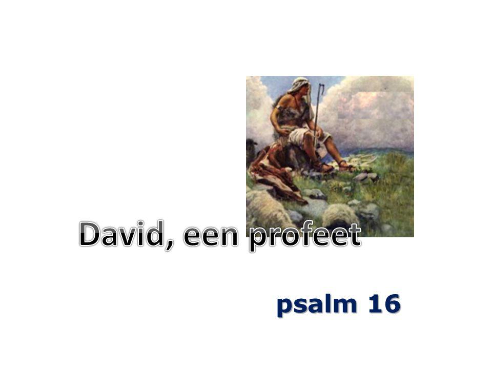 1 Een kleinood van David.