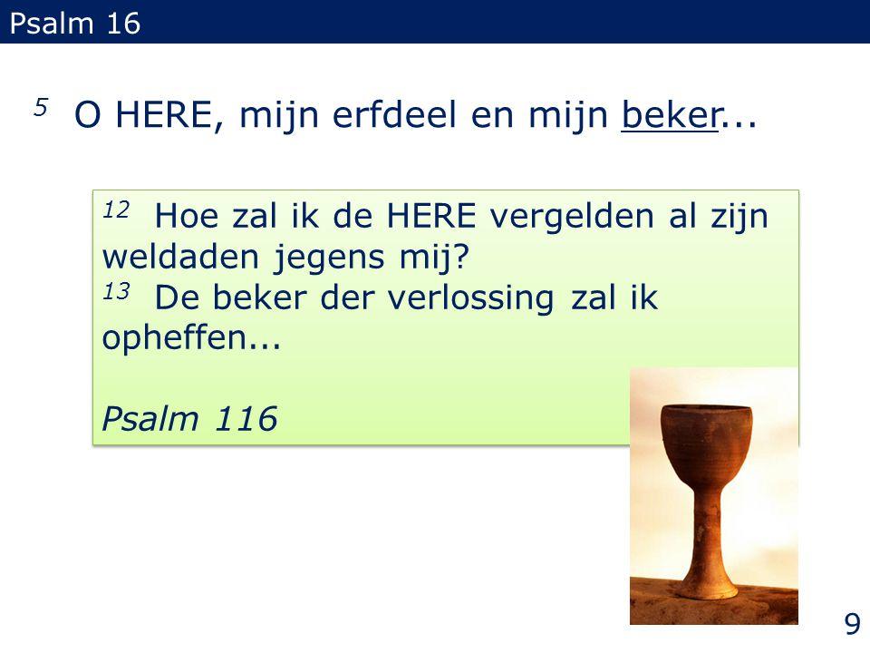 5 O HERE, mijn erfdeel en mijn beker... Psalm 16 12 Hoe zal ik de HERE vergelden al zijn weldaden jegens mij? 13 De beker der verlossing zal ik opheff