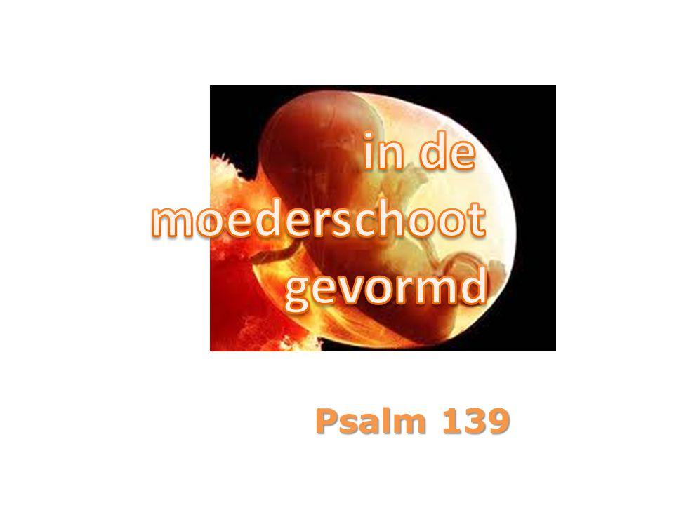 1 Voor de koorleider. Van David. Een psalm. HERE, Gij doorgrondt en kent mij;