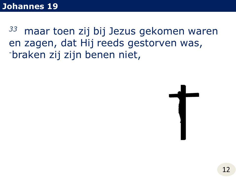 Johannes 19 33 maar toen zij bij Jezus gekomen waren en zagen, dat Hij reeds gestorven was, - braken zij zijn benen niet, 12
