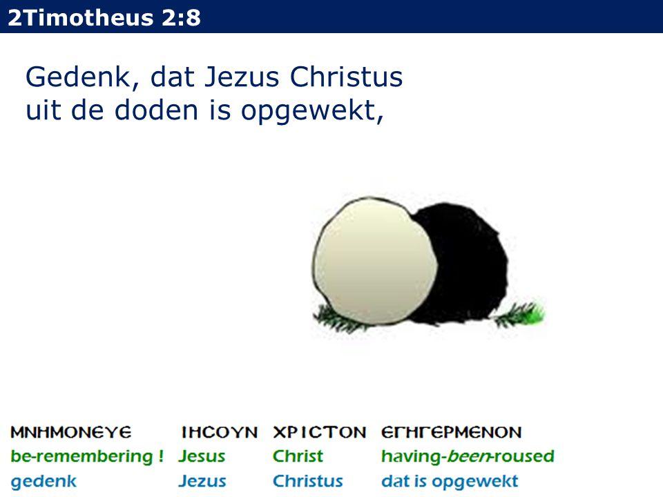 2Timotheus 2:8 Gedenk, dat Jezus Christus uit de doden is opgewekt,