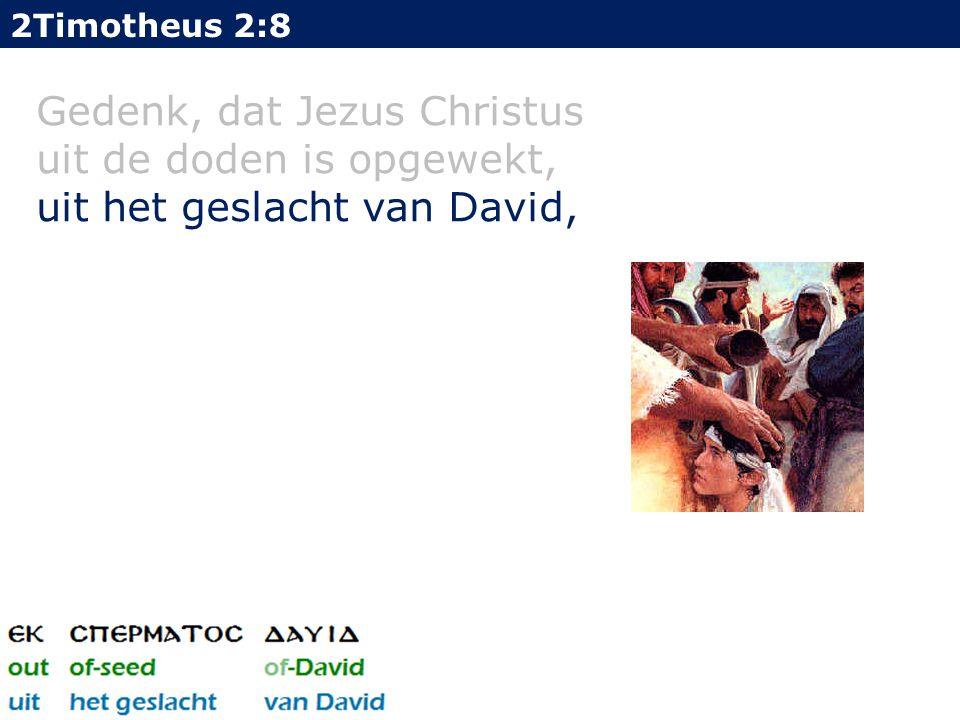 2Timotheus 2:8 Gedenk, dat Jezus Christus uit de doden is opgewekt, uit het geslacht van David,