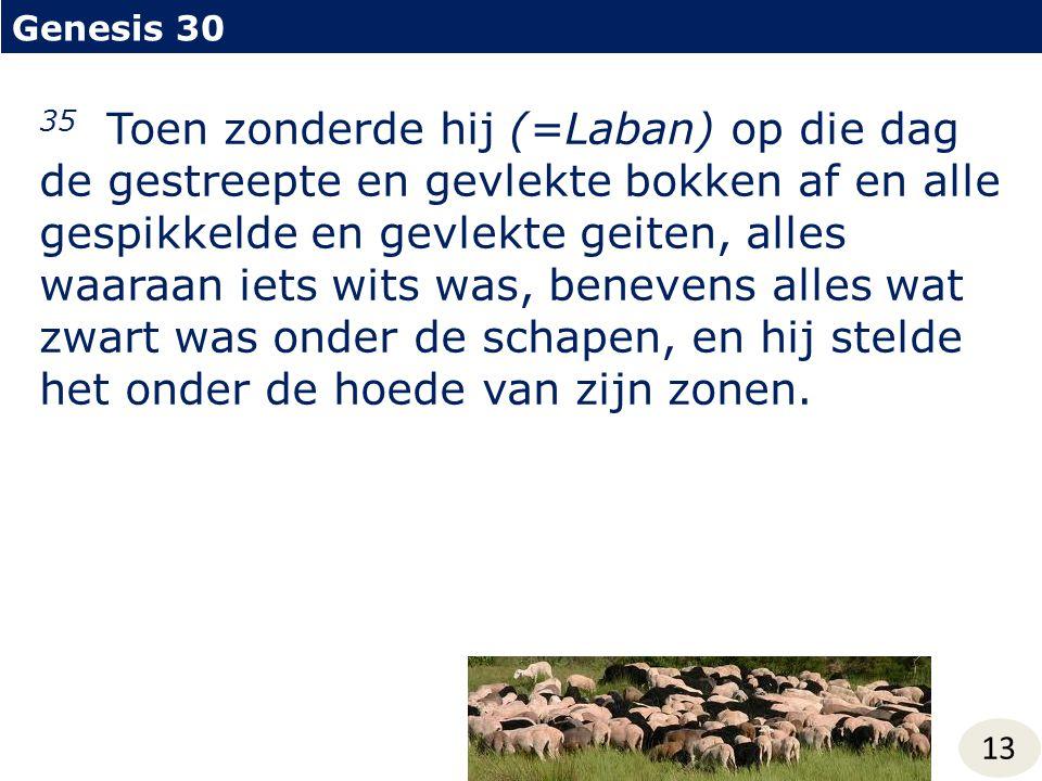 Genesis 30 13 35 Toen zonderde hij (=Laban) op die dag de gestreepte en gevlekte bokken af en alle gespikkelde en gevlekte geiten, alles waaraan iets