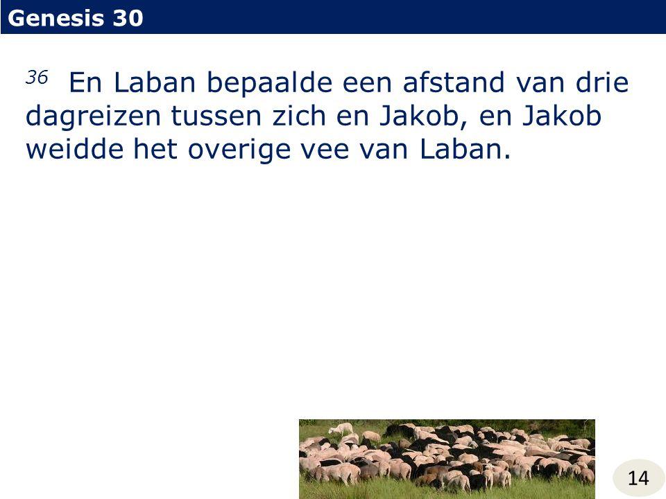 Genesis 30 14 36 En Laban bepaalde een afstand van drie dagreizen tussen zich en Jakob, en Jakob weidde het overige vee van Laban.