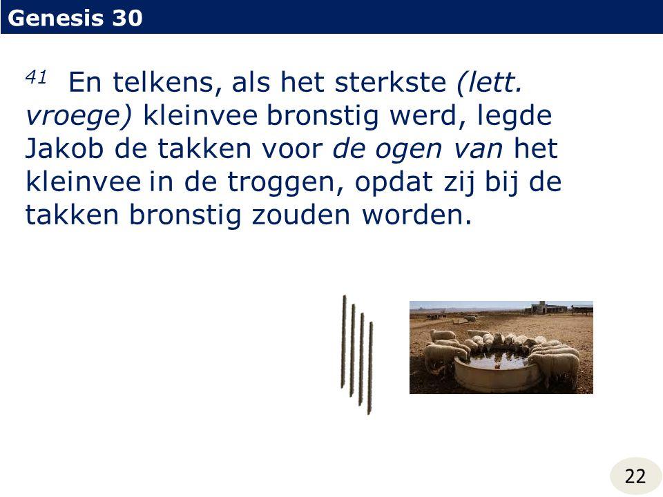 Genesis 30 22 41 En telkens, als het sterkste (lett. vroege) kleinvee bronstig werd, legde Jakob de takken voor de ogen van het kleinvee in de troggen