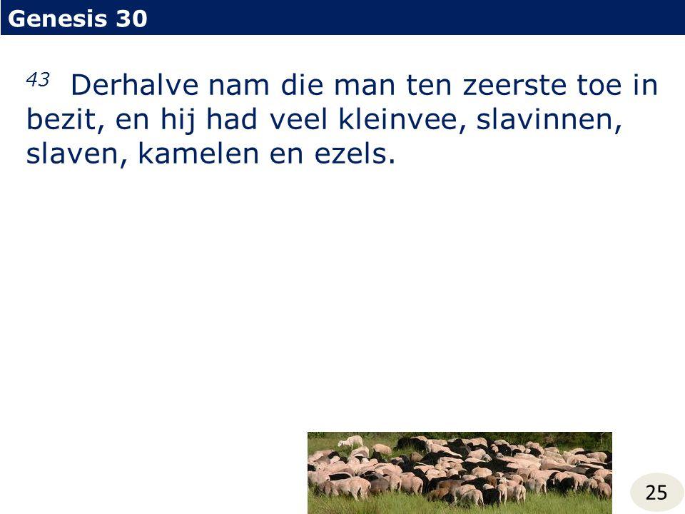 Genesis 30 25 43 Derhalve nam die man ten zeerste toe in bezit, en hij had veel kleinvee, slavinnen, slaven, kamelen en ezels.
