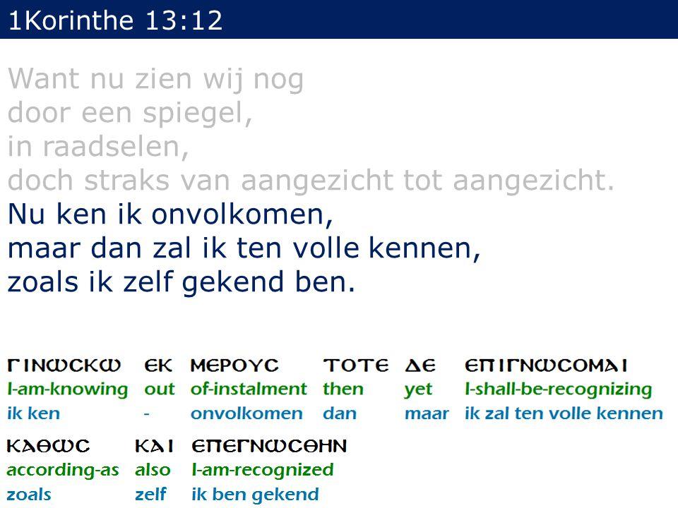 1Korinthe 13:12 Want nu zien wij nog door een spiegel, in raadselen, doch straks van aangezicht tot aangezicht.