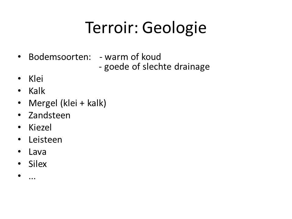 Terroir: Geologie Bodemsoorten: - warm of koud - goede of slechte drainage Klei Kalk Mergel (klei + kalk) Zandsteen Kiezel Leisteen Lava Silex...
