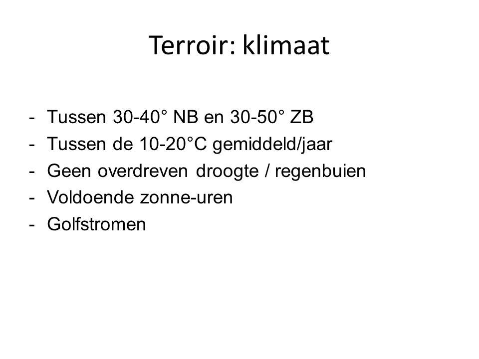 Terroir: klimaat -Tussen 30-40° NB en 30-50° ZB -Tussen de 10-20°C gemiddeld/jaar -Geen overdreven droogte / regenbuien -Voldoende zonne-uren -Golfstr
