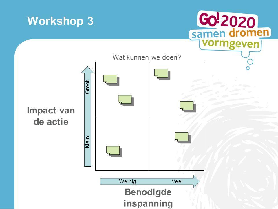 Workshop 3 Wat kunnen we doen WeinigVeel Groot Klein Benodigde inspanning Impact van de actie