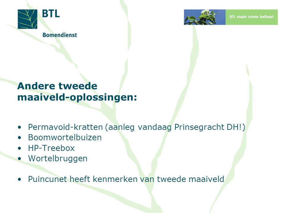 Andere tweede maaiveld-oplossingen: Permavoid-kratten (aanleg vandaag Prinsegracht DH!) Boomwortelbuizen HP-Treebox Wortelbruggen Puincunet heeft kenm