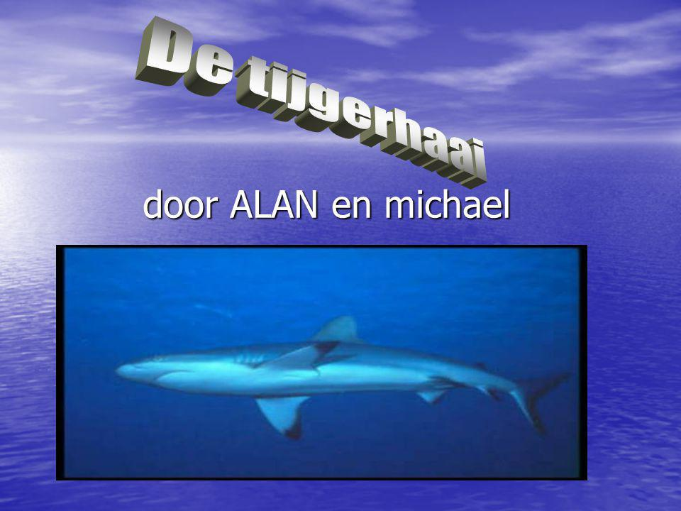 door ALAN en michael