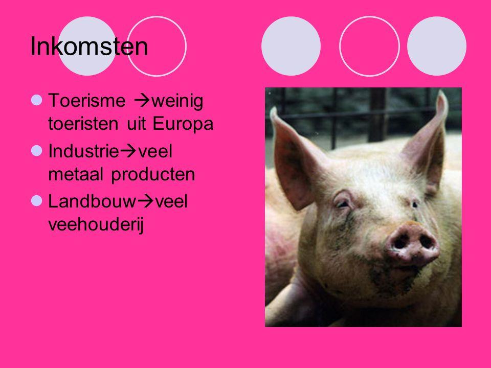 Inkomsten Toerisme  weinig toeristen uit Europa Industrie  veel metaal producten Landbouw  veel veehouderij