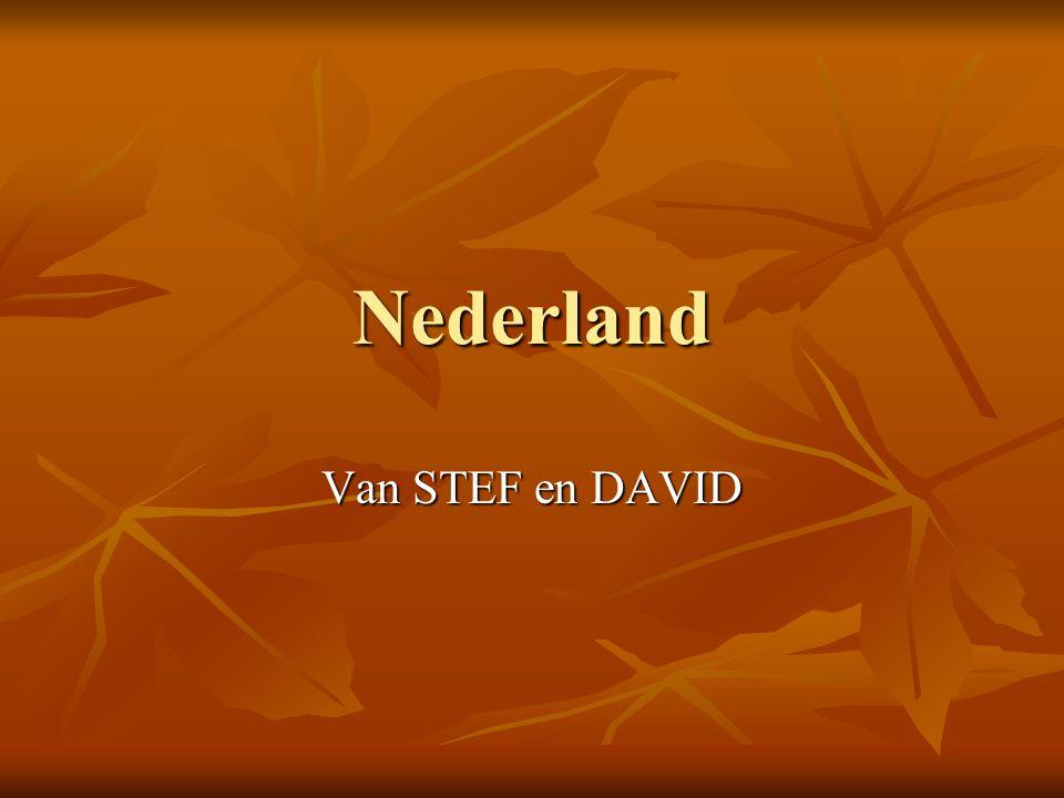 Nederland Van STEF en DAVID
