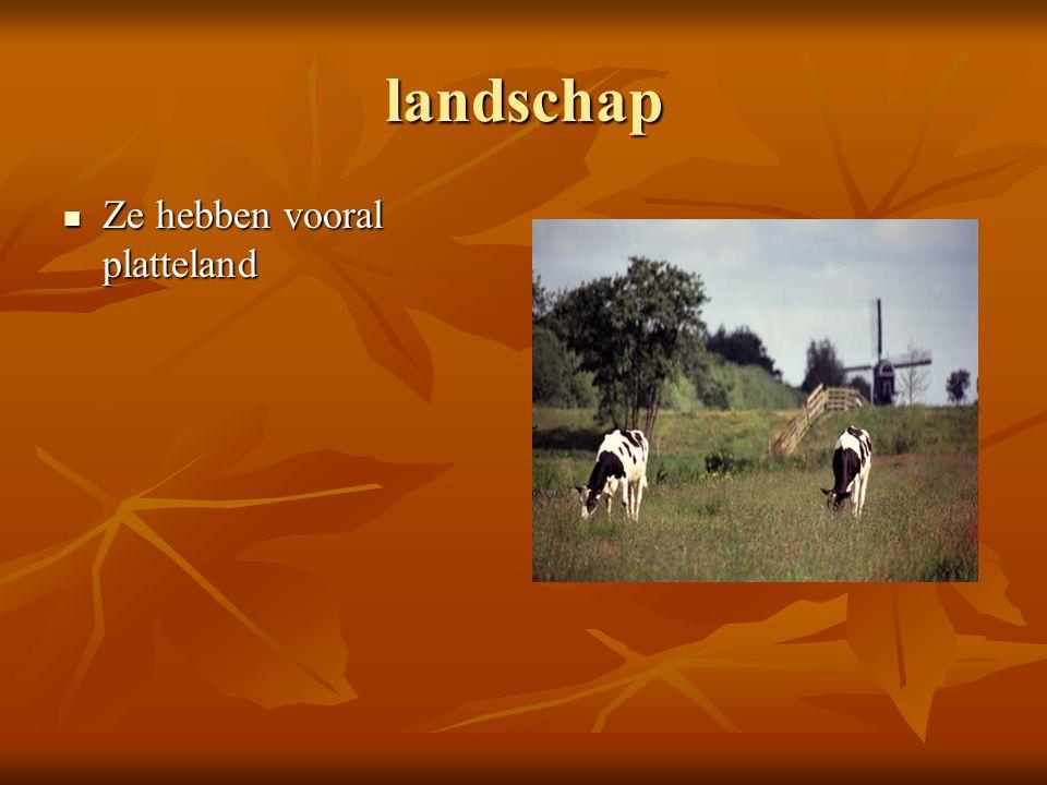 landschap Ze hebben vooral platteland Ze hebben vooral platteland