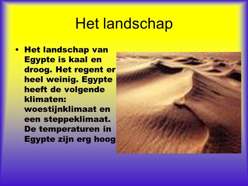 Het landschap Het landschap van Egypte is kaal en droog. Het regent er heel weinig. Egypte heeft de volgende klimaten: woestijnklimaat en een steppekl