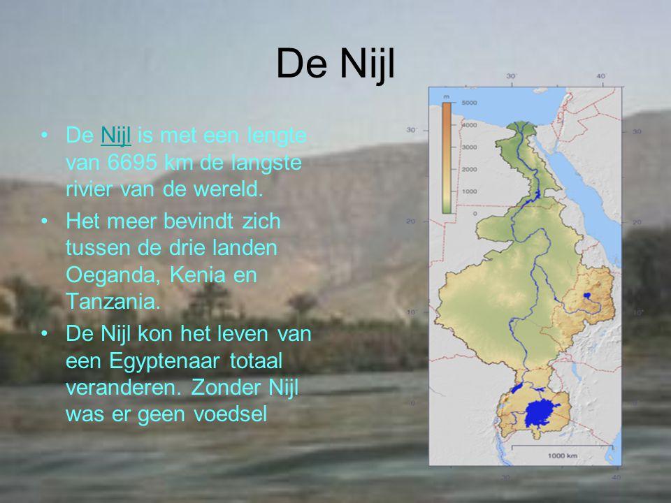 De Nijl De Nijl is met een lengte van 6695 km de langste rivier van de wereld.Nijl Het meer bevindt zich tussen de drie landen Oeganda, Kenia en Tanzania.