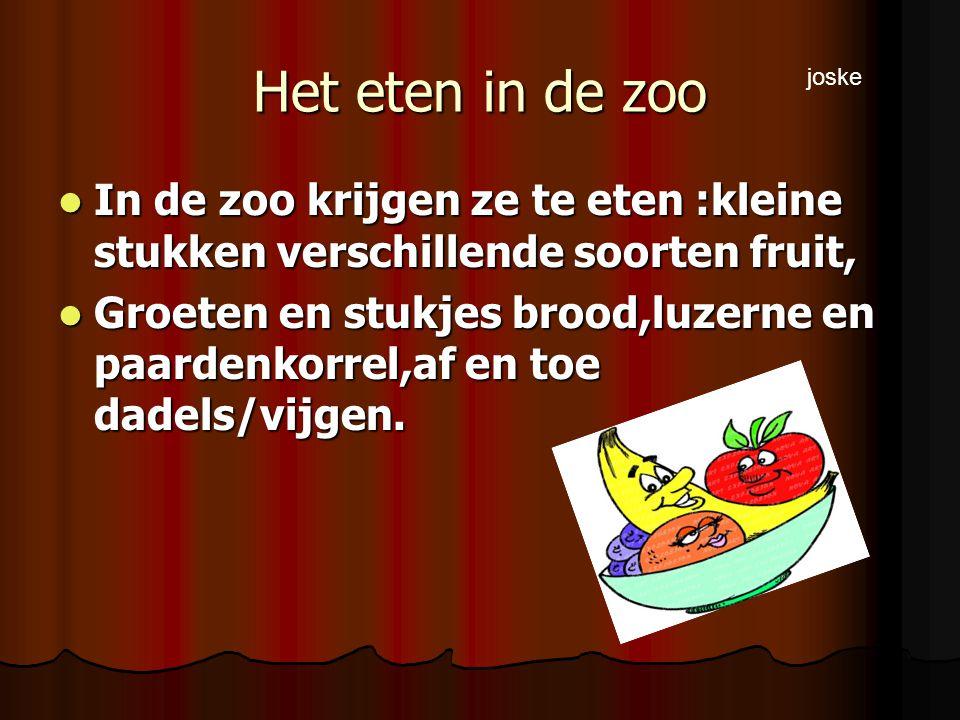 Het eten in de zoo In de zoo krijgen ze te eten :kleine stukken verschillende soorten fruit, In de zoo krijgen ze te eten :kleine stukken verschillende soorten fruit, Groeten en stukjes brood,luzerne en paardenkorrel,af en toe dadels/vijgen.