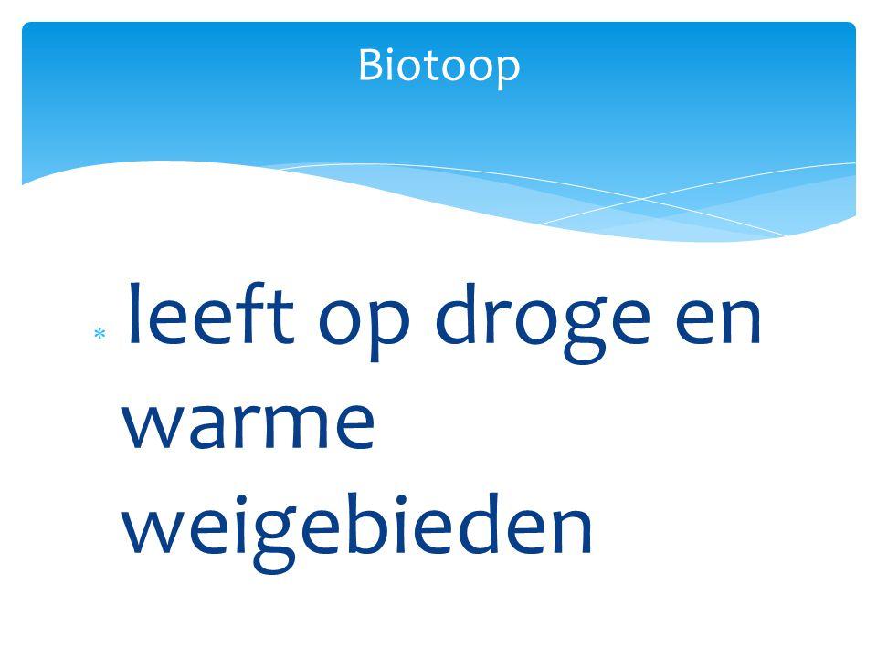  leeft op droge en warme weigebieden Biotoop