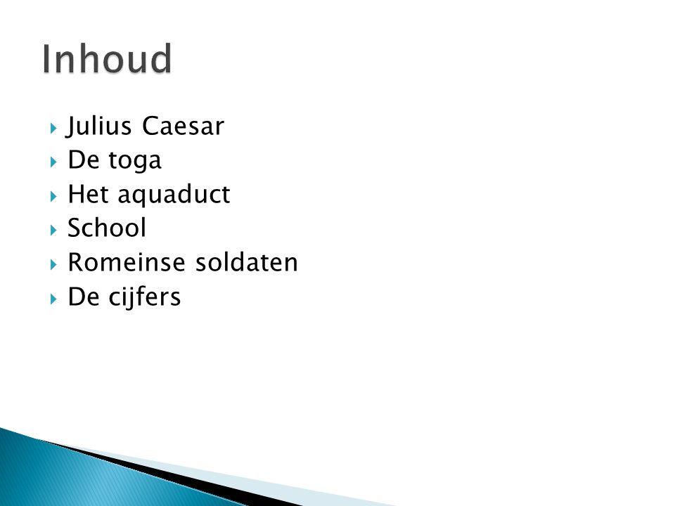  Julius Caesar  De toga  Het aquaduct  School  Romeinse soldaten  De cijfers