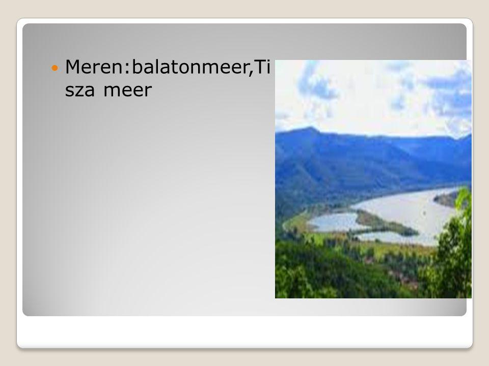 Landschap Bergen Rivieren Meren Meren:balatonmeer,Ti sza meer