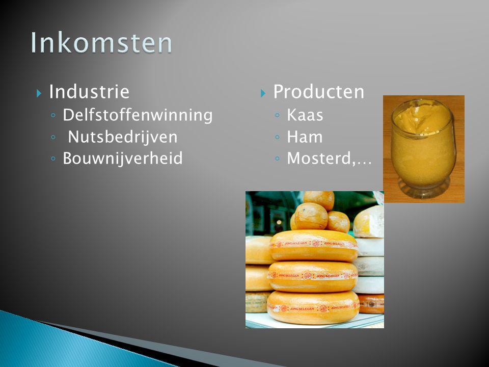  Industrie ◦ Delfstoffenwinning ◦ Nutsbedrijven ◦ Bouwnijverheid  Producten ◦ Kaas ◦ Ham ◦ Mosterd,…
