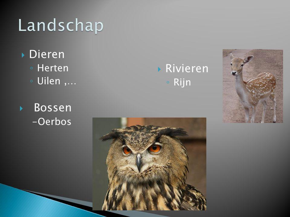  Dieren ◦ Herten ◦ Uilen,…  Bossen -Oerbos  Rivieren ◦ Rijn
