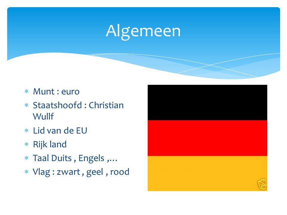 Algemeen  Munt : euro  Staatshoofd : Christian Wullf  Lid van de EU  Rijk land  Taal Duits, Engels,…  Vlag : zwart, geel, rood