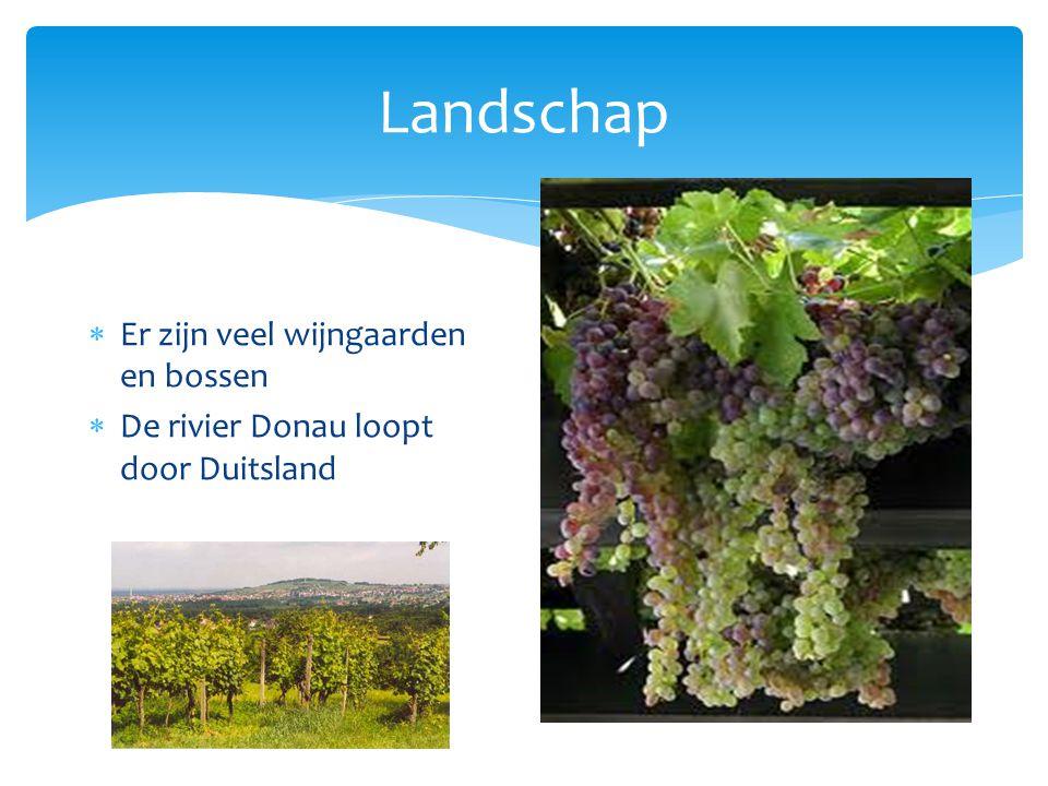 Landschap  Er zijn veel wijngaarden en bossen  De rivier Donau loopt door Duitsland
