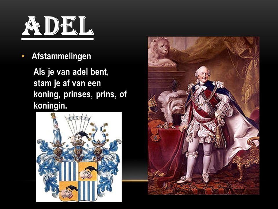 Afstammelingen Als je van adel bent, stam je af van een koning, prinses, prins, of koningin. ADEL