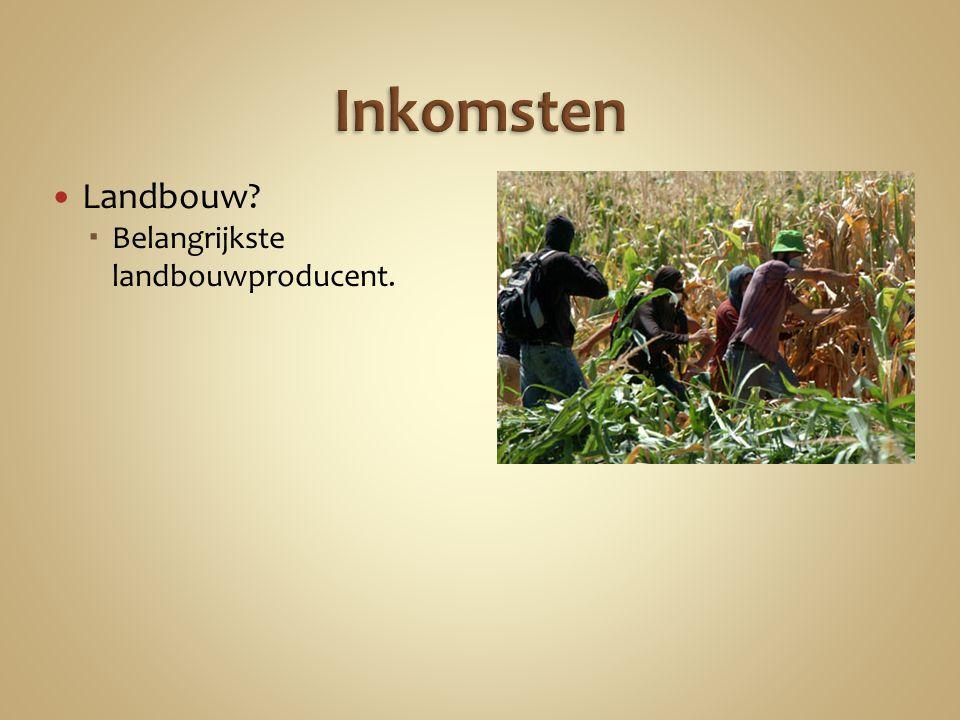 Landbouw  Belangrijkste landbouwproducent.