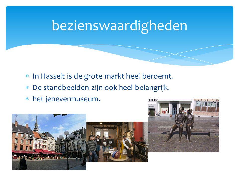  In Hasselt is de grote markt heel beroemt.  De standbeelden zijn ook heel belangrijk.  het jenevermuseum. bezienswaardigheden