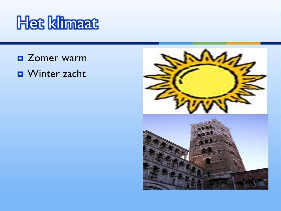 Zomer warm  Winter zacht