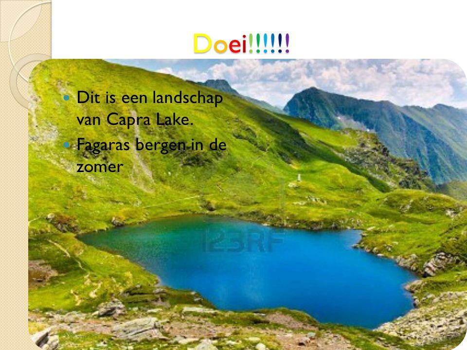 Doei!!!!!!Doei!!!!!!Doei!!!!!!Doei!!!!!! Dit is een landschap van Capra Lake. Fagaras bergen in de zomer