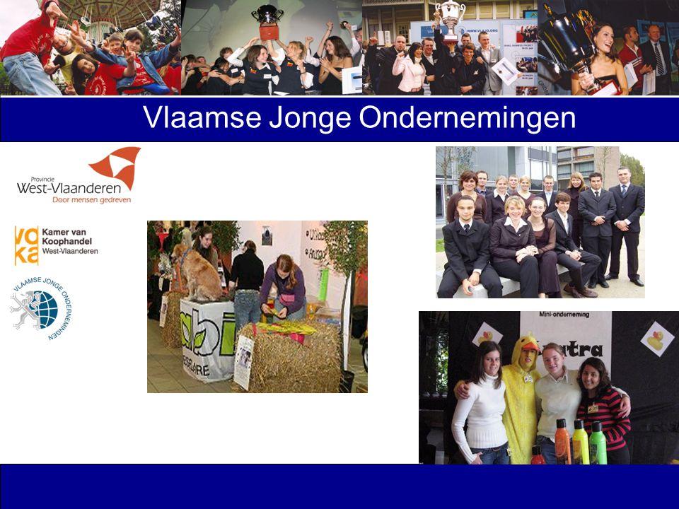 Vlaamse Jonge Ondernemingen