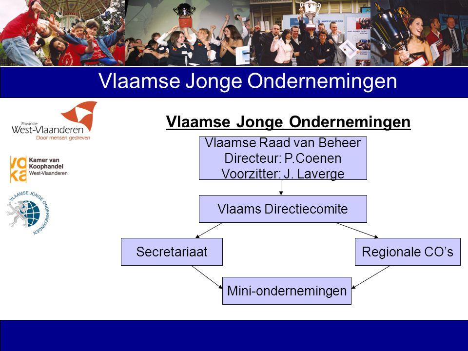 Vlaamse Jonge Ondernemingen Vlaamse Raad van Beheer Directeur: P.Coenen Voorzitter: J. Laverge Vlaams Directiecomite SecretariaatRegionale CO's Mini-o
