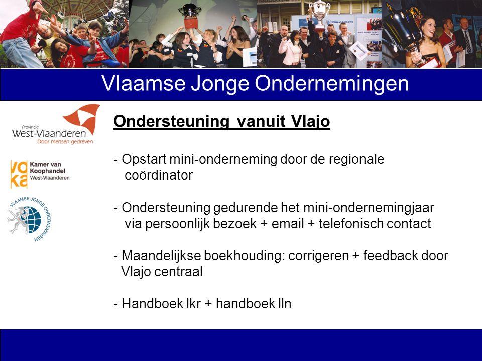 Vlaamse Jonge Ondernemingen Ondersteuning vanuit Vlajo - Opstart mini-onderneming door de regionale coördinator - Ondersteuning gedurende het mini-ond