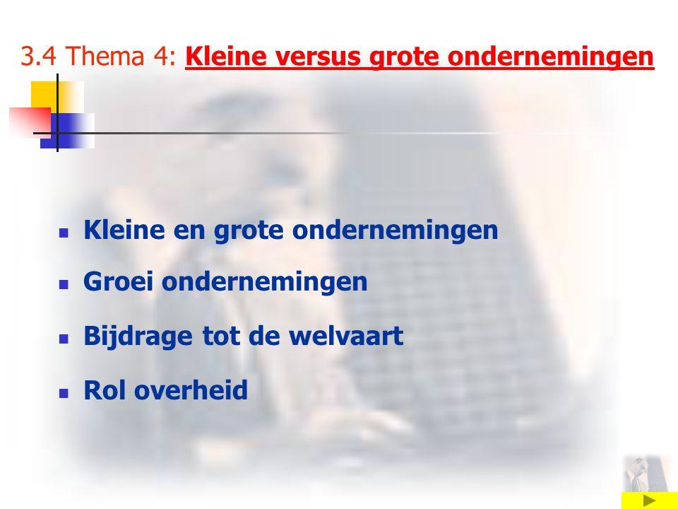 3.4 Thema 4: Kleine versus grote ondernemingenKleine versus grote ondernemingen Kleine en grote ondernemingen Groei ondernemingen Bijdrage tot de welvaart Rol overheid