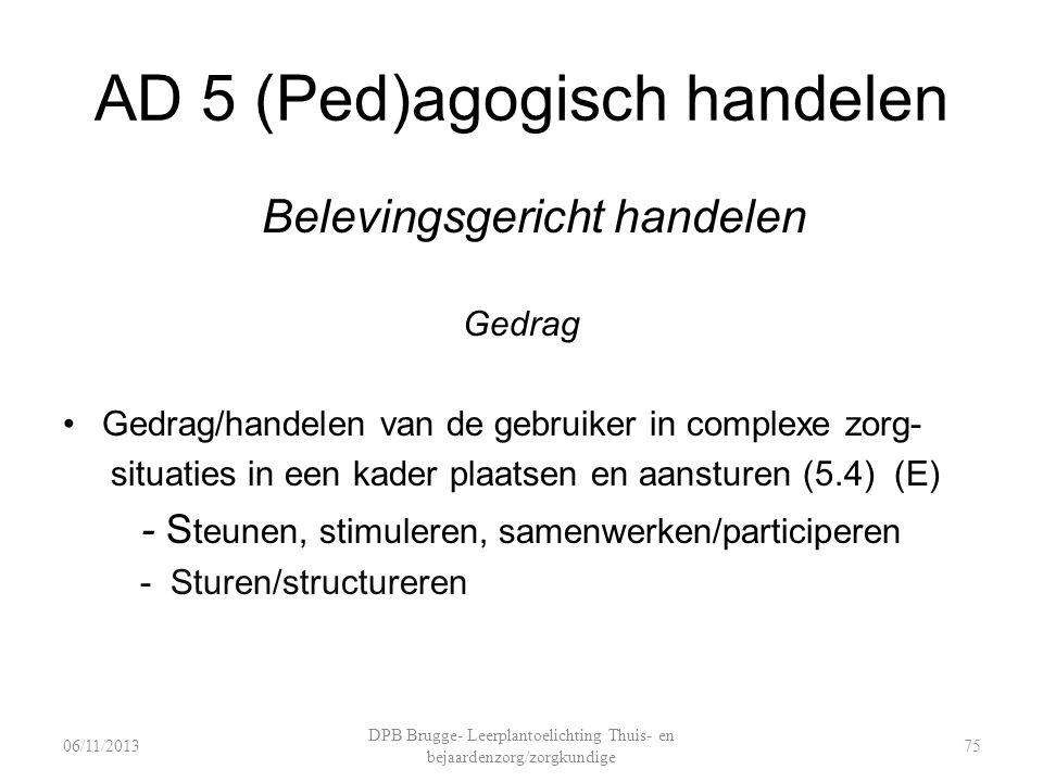 AD 5 (Ped)agogisch handelen Belevingsgericht handelen Gedrag Gedrag/handelen van de gebruiker in complexe zorg- situaties in een kader plaatsen en aansturen (5.4) (E) - S teunen, stimuleren, samenwerken/participeren - Sturen/structureren DPB Brugge- Leerplantoelichting Thuis- en bejaardenzorg/zorgkundige 7506/11/2013