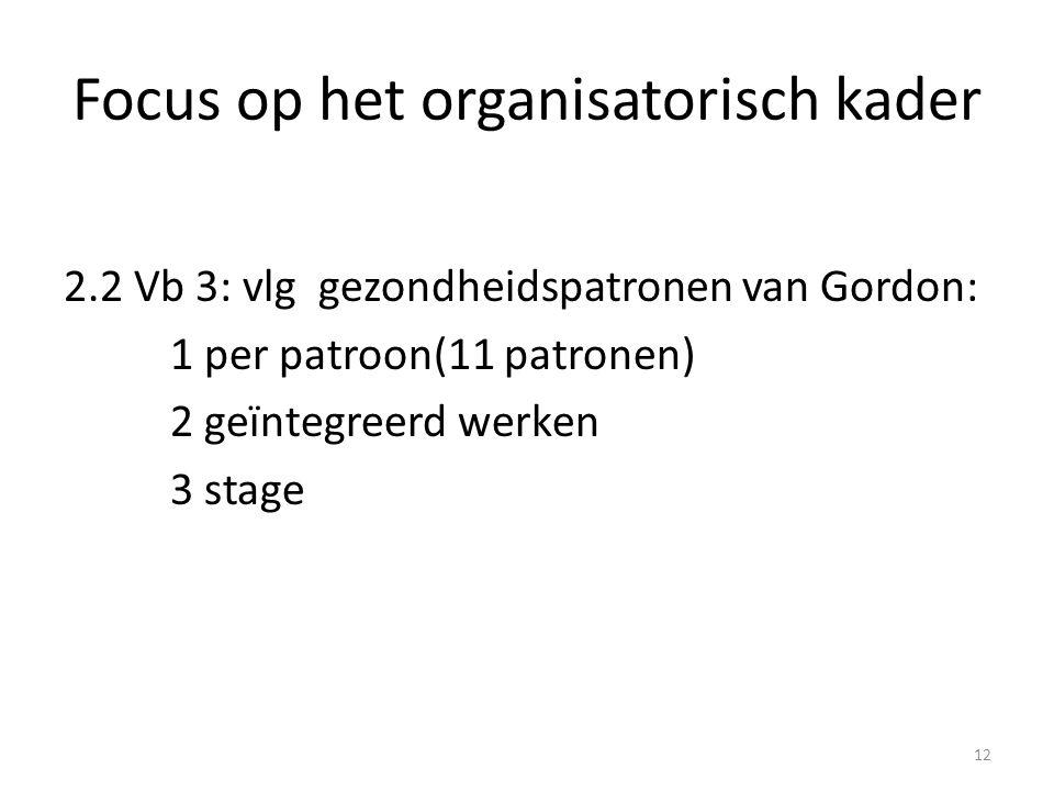 Focus op het organisatorisch kader 2.2 Vb 3: vlg gezondheidspatronen van Gordon: 1 per patroon(11 patronen) 2 geïntegreerd werken 3 stage 12