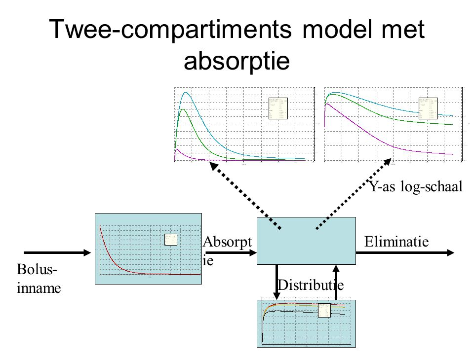 Twee-compartiments model met absorptie Eliminatie Bolus- inname Absorpt ie Distributie Y-as log-schaal