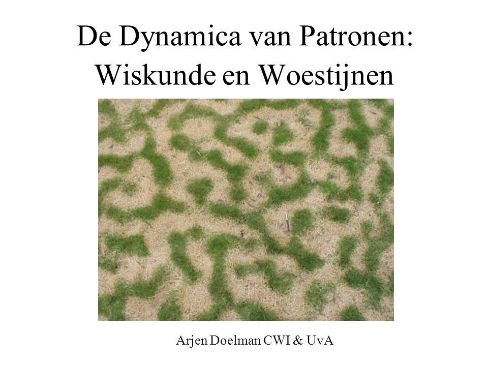 Wiskunde en Woestijnen De Dynamica van Patronen: Arjen Doelman CWI & UvA