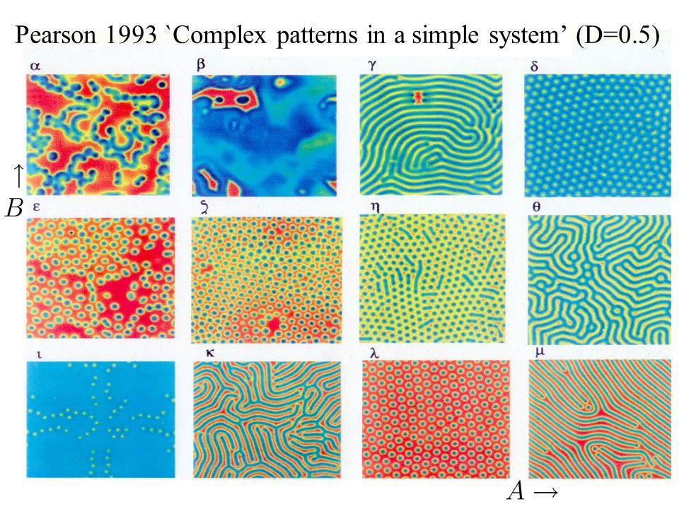 Pearson 1993 `Complex patterns in a simple system' (D=0.5)