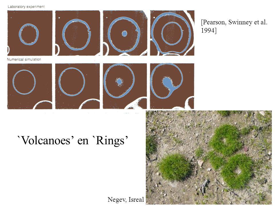 [Pearson, Swinney et al. 1994] `Volcanoes' en `Rings' Negev, Isreal